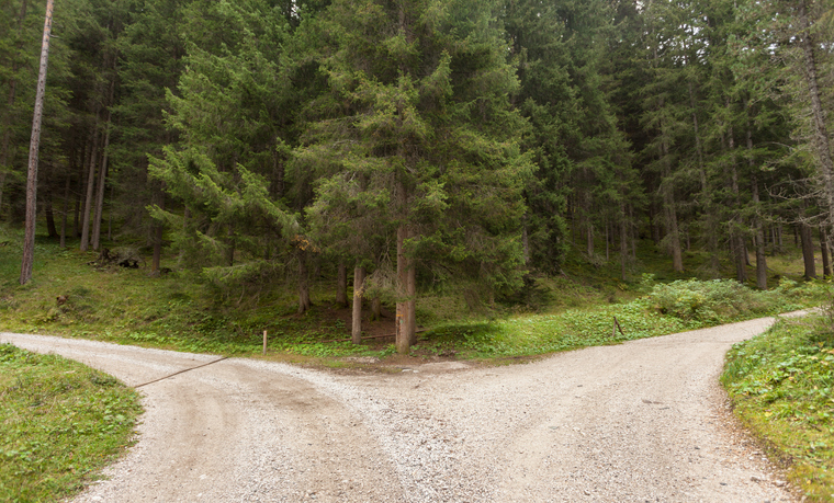 A single mountain road splits in two different directions. It's an autumnal cloudy day.